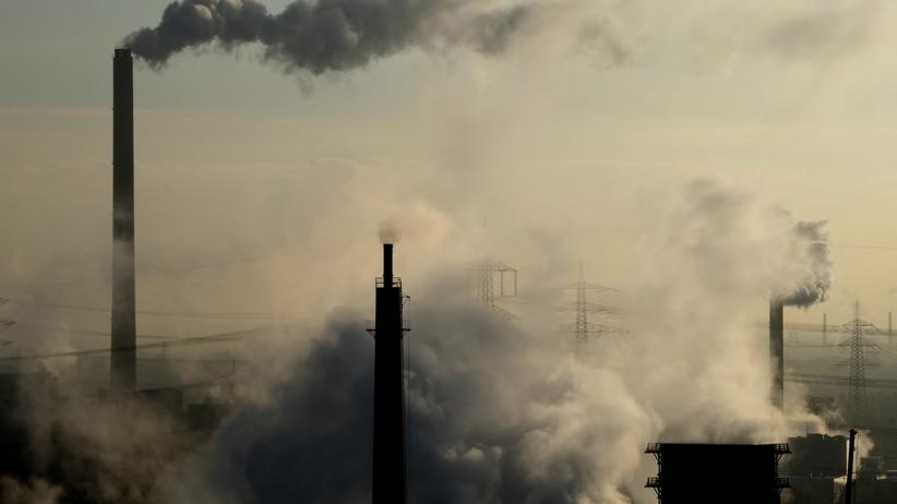 Wissen, Fossile Brennstoffe,     Fossile Energie     CO2     Klimawandel     Klimapolitik     Kohle     Gas