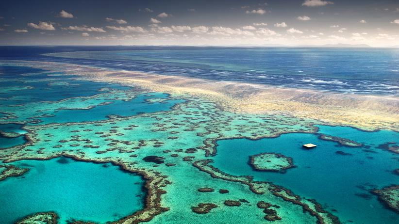 Wissen, Great Barrier Reef, Korallenriffe, Welterbe, Great Barrier Reef, Australien, Unesco, Klimawandel, Canberra