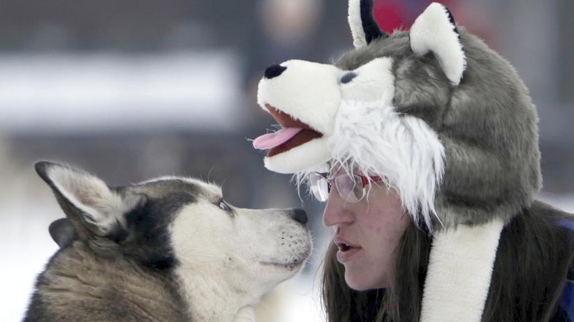 Hund Herrchen Blickkontakt