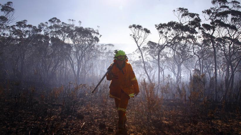 Klimawandel: Das 2-Grad-Ziel wird vor Hitze und Fluten nicht schützen