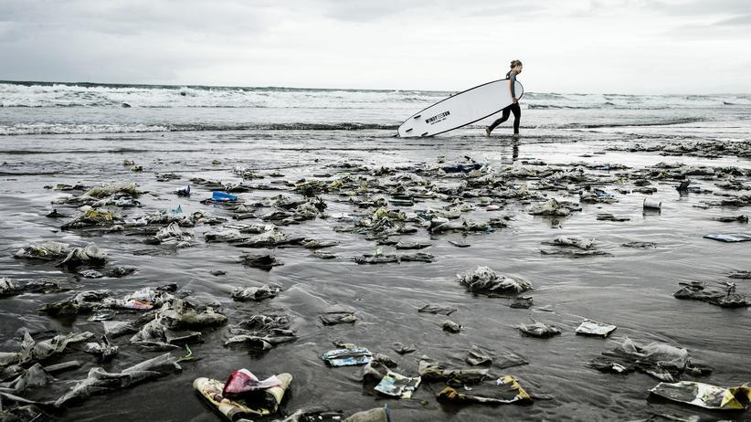Wissen, Recycling, Plastik, Meerestiere, Adidas, Müll, Nachhaltigkeit