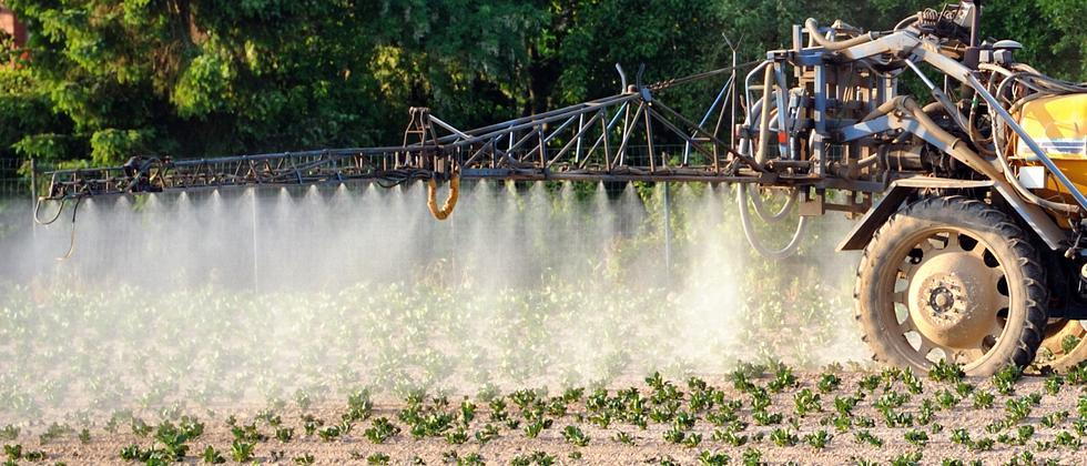 Pestizid Landwirtschaft Umwelt