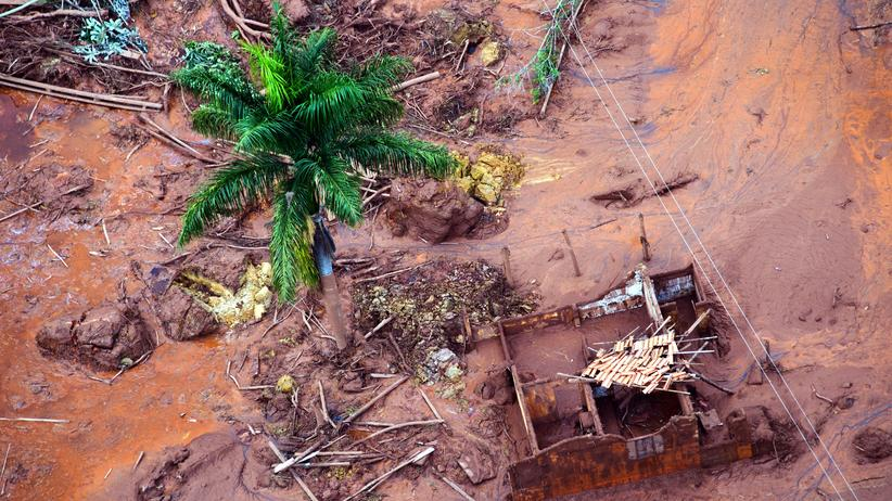 Bergbau-Unglück in Brasilien: Der Rio Doce stirbt