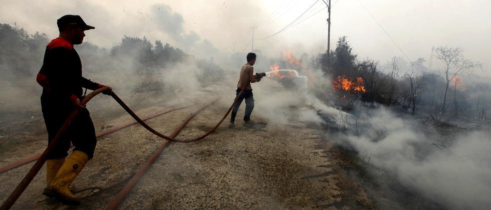 Indonesien Walbrände Feuer Torfmoor Klima CO2 Smog Palmöl Brandrodung Orang Utan Regenwald