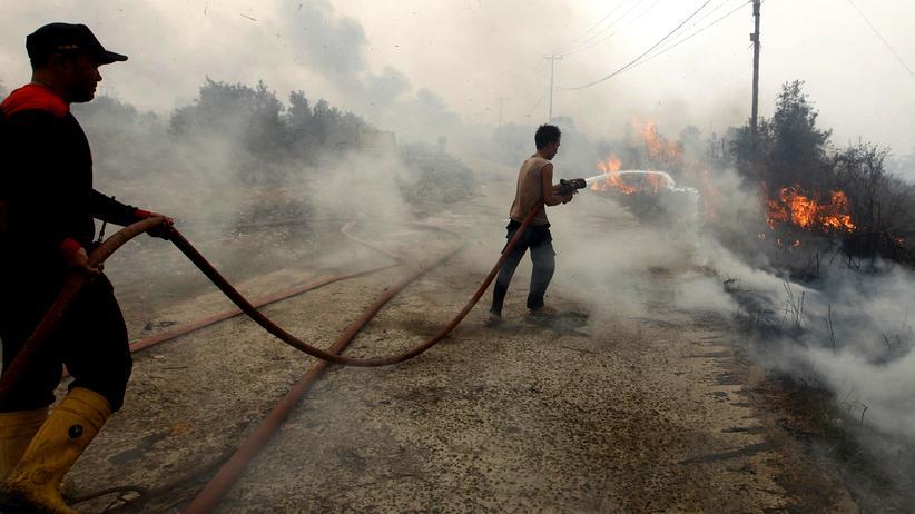 Indonesien: Asiens Regenwald steht in Flammen