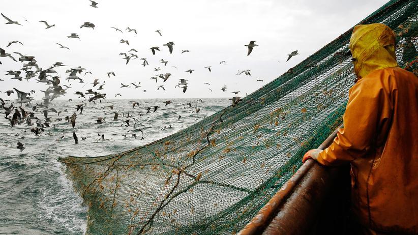 """Überfischung: Fischer auf dem Trawler """"Nicolas Jeremy"""" werfen ihre Netze vor der Küste Nordfrankreichs aus."""