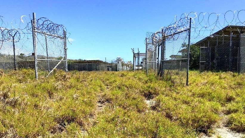 Guantanamo: Forscher wollen aus Guantanamo ein Naturschutzgebiet machen: Das Gefangenenlager X-Ray wurde bereits vor 14 Jahren geschlossen und grünt auf.