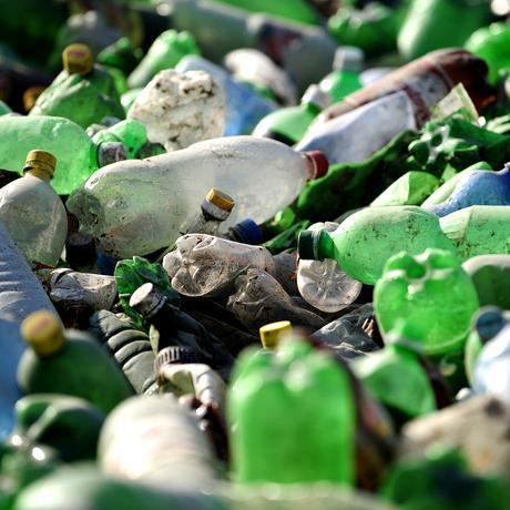 Plastikmüll: Lieblingsessen Plastik