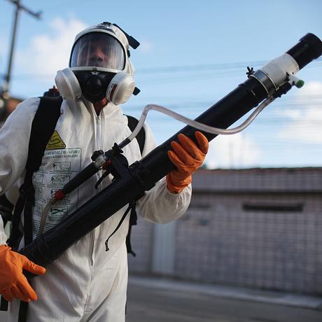 Zika-Virus: Mit etwas Denksport zum Zika-Checker