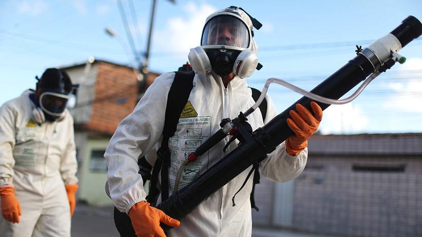 Zika-Virus: Mückenbekämpfung in Recife, Brasilien. Das Zika-Virus wird von Gelbfiebermücken (Aedes aegypti) übertragen.