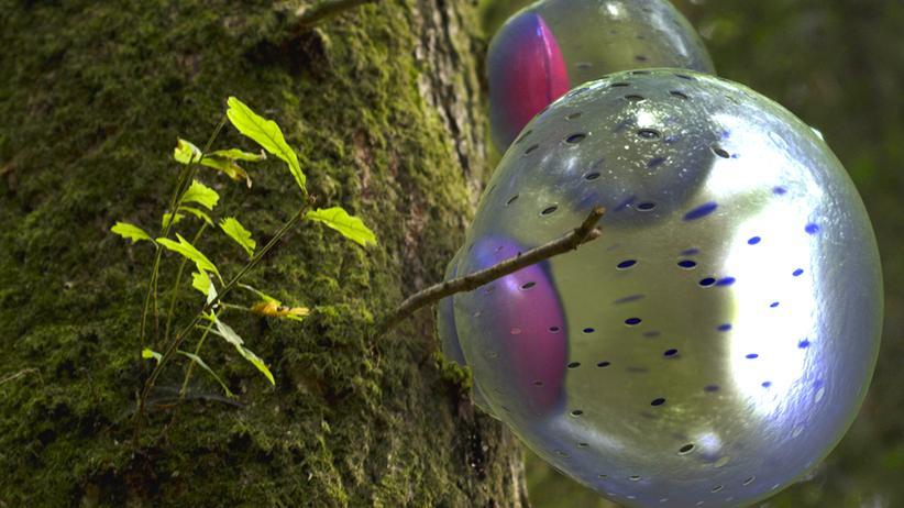 Crispr: Die Natur infizieren, um sie zu retten
