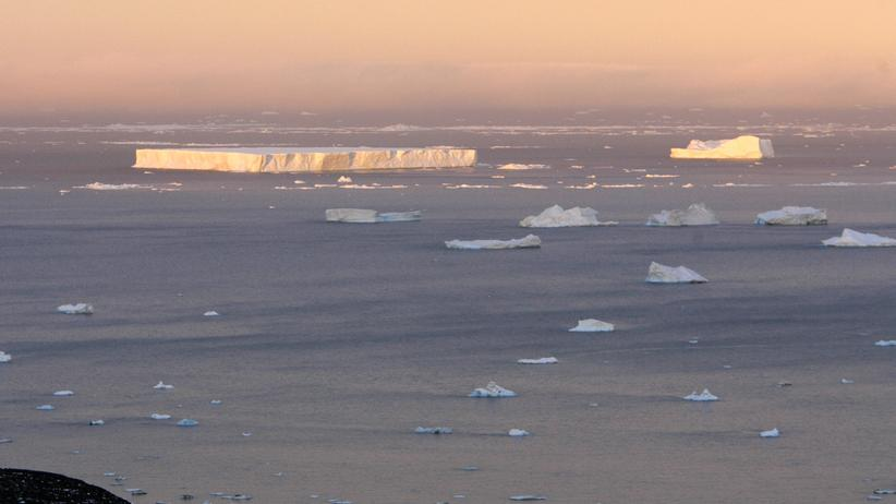 Antarktis: Im Weddellmeer soll das größte Meeresschutzgebiet der Welt entstehen. (Archivbild)