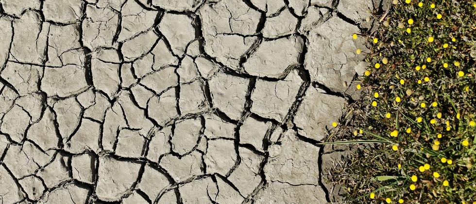 Klimaschutz: Klimarettung geht auch ohne die USA