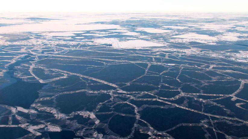 Klimawandel: Neues Meereis (graue Flächen) bildet sich zwischen alten Schollen, die den vergangenen Sommer überstanden haben.