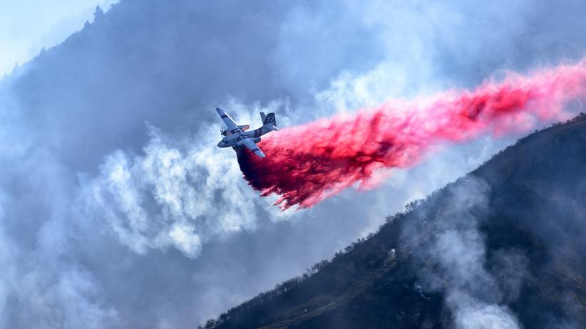Waldbrände in Kalifornien: Verzweifelt gegen die Flammen. Seit Tagen versuchen Einsatzkräfte die Brandherde in Kalifornien unter Kontrolle zu bekommen.
