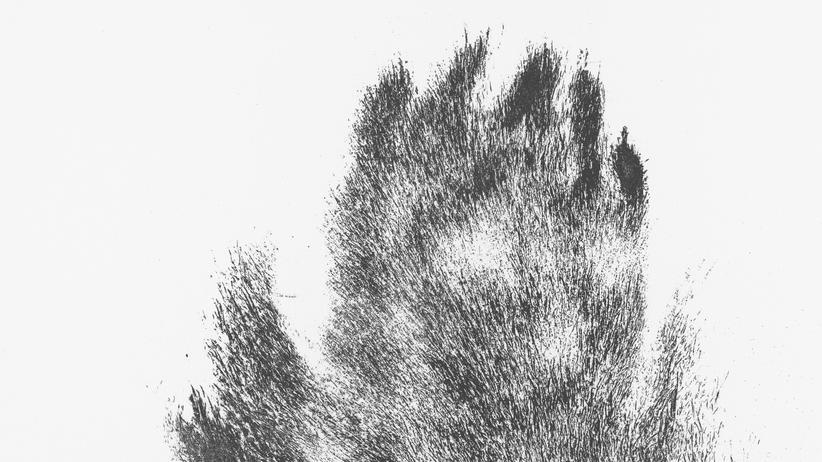 Lithografien: Tierhaare auf der Druckerpresse