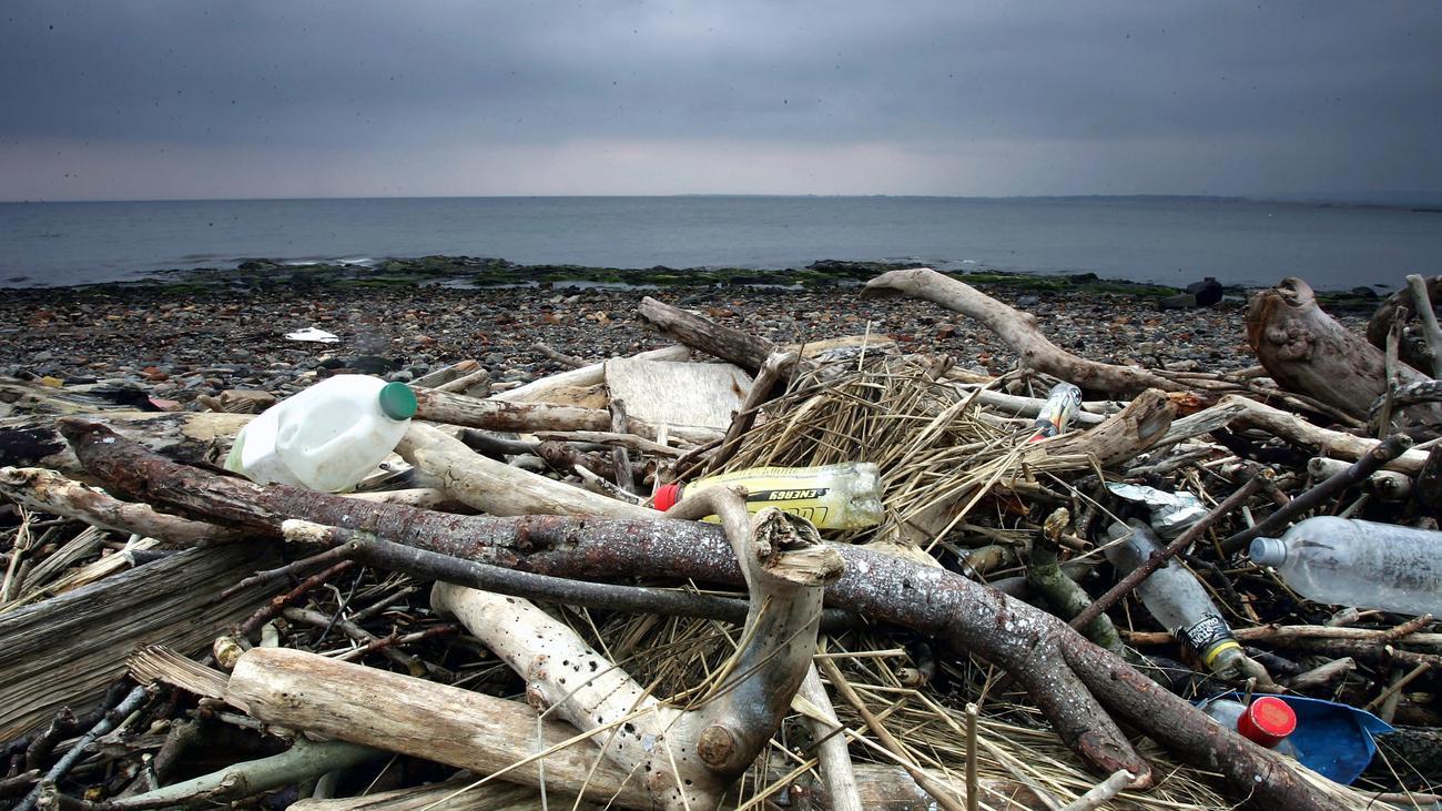 Umwelt: Plastikverpackungen in der EU sollen bis 2030 wiederverwertbar sein