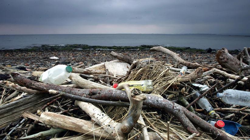 Umwelt: Plastikmüll landet oft im Meer.