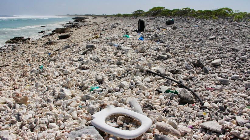 Umweltverschmutzung: Plastikstrudel im Pazifik viermal größer als Deutschland