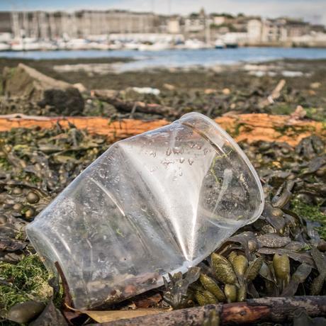 Plastik: Der gefährliche Müll