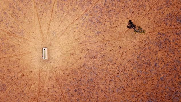 Dürre in Australien: Hier hat das Leben kaum noch eine Chance