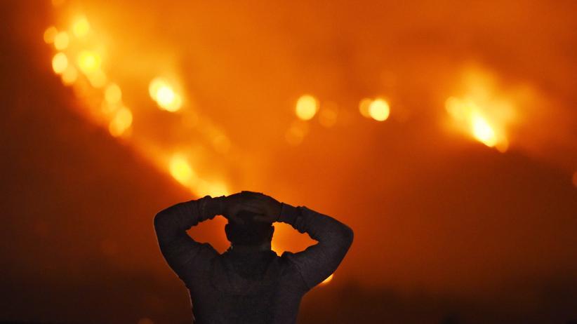 Klimawandel: Waldbrände in Kalifornien: Weltweit nimmt die Zahl extremer Wetterereignisse zu.
