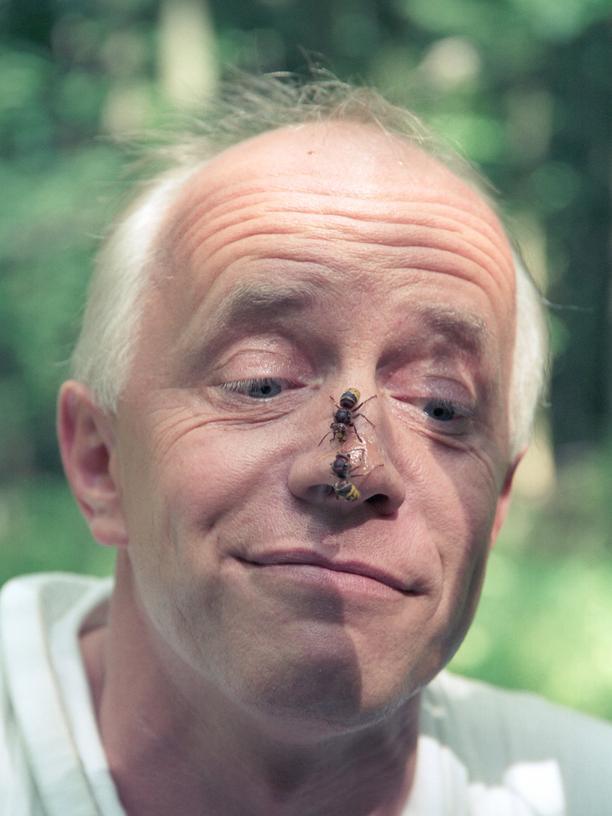 Hornissen: Elmar Billig ist im Hauptberuf Kieferorthopäde, nicht Biologe. Gemeinsam mit der Bayerischen Akademie für Naturschutz und Landschaftspflege entwickelt er aktuell eine einheitliche Vorgehensweise zur Ausbildung von Wespen- und Hornissenberaterinnen und Umsiedlern.