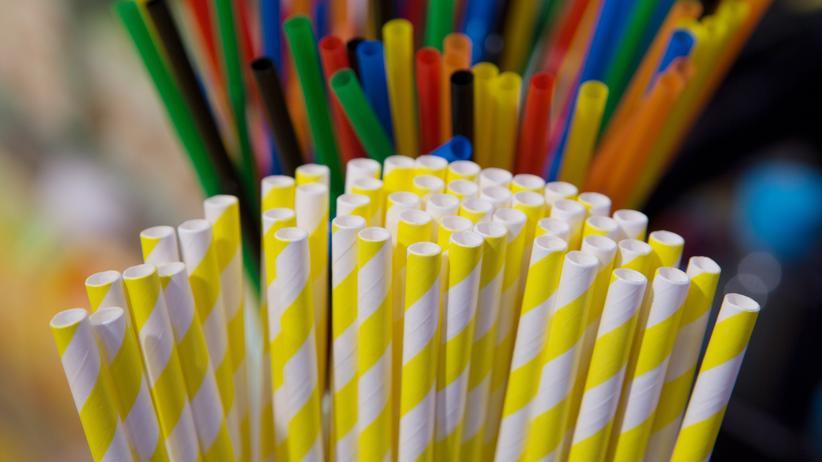 Umweltverschmutzung: EU-Parlament stimmt für Verbot von Wegwerfplastik