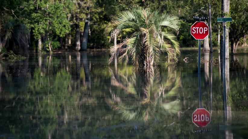 IPCC-Bericht zu 1,5 Grad: Nach uns die Sintflut