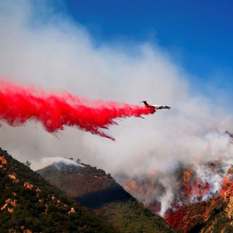 Waldbrände: Selbst schuld, wer Villen in den Wald baut?