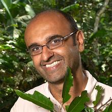 Climate Change: Professor of ecosystem science, Yadvinder Malhi