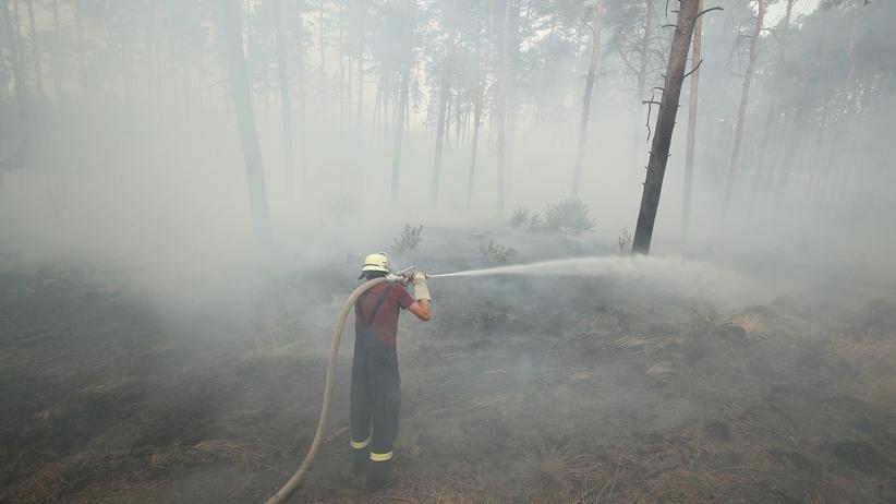Waldbrände: Ein Feuerwehrmann löscht Flammen in einem Wald im Süden Brandenburgs. Das Bundesland war 2018 von starken Dürren betroffen.