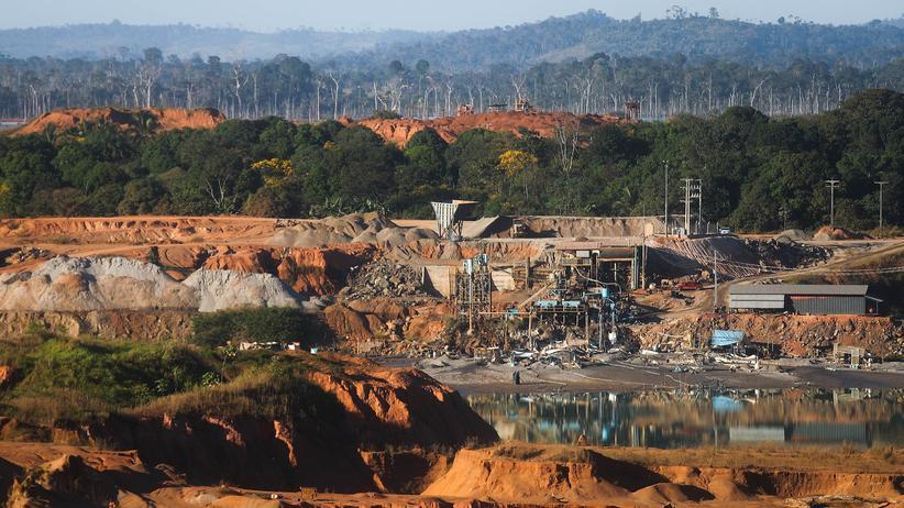 Klimawandel: Brasilien kürzt Budget für Klimaschutz um 95 Prozent