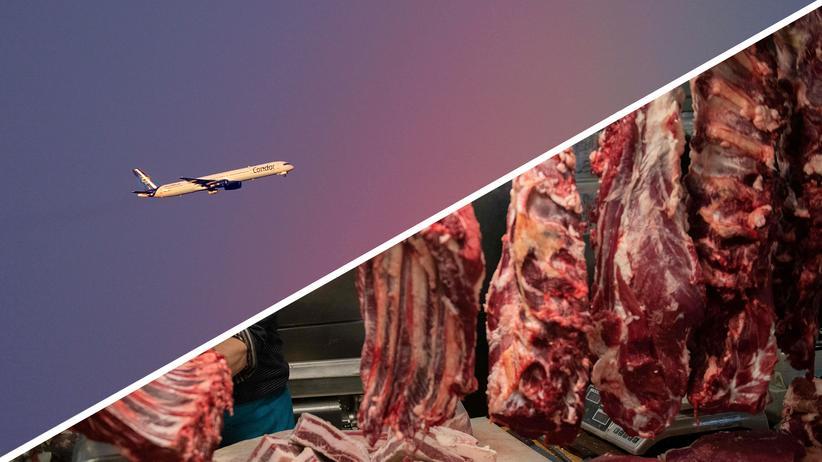Klimawandel: Weniger fliegen, weniger Fleisch produzieren – das würde den CO2-Ausstoß schon erheblich senken und dem Klimawandel entgegenwirken.