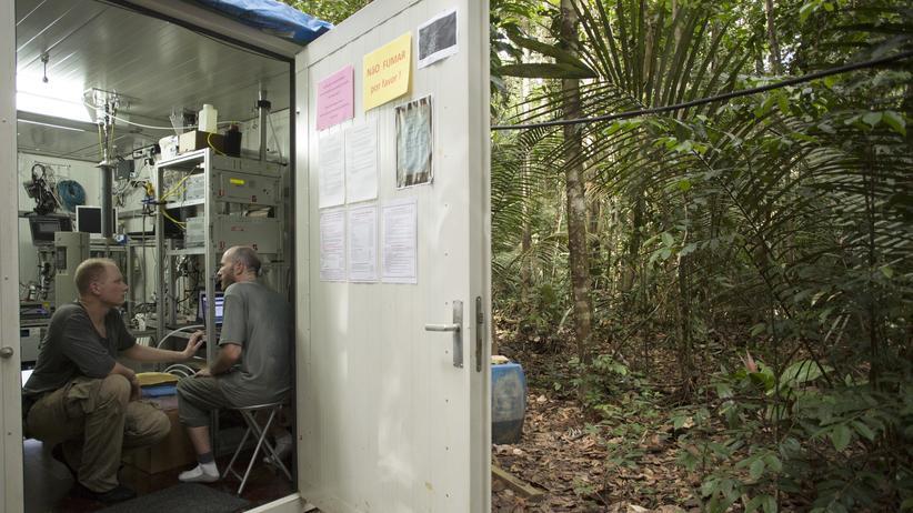 Susan Trumbore: In Containern am Waldboden betreiben die Forscherinnen und Forscher des Riesenturm-Observatoriums, des Amazon Tall Tower Observatory (Atto), nördlich von Manaus ihre Labors.