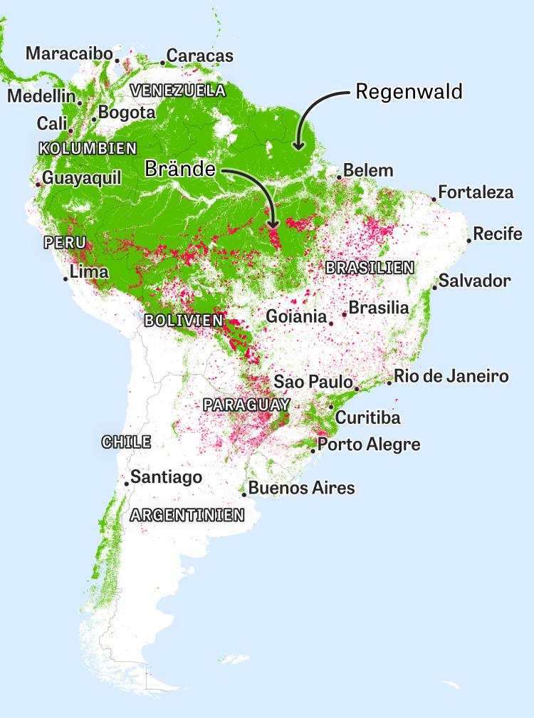 Brasilien Karte Welt.Südamerika Feuer Neben Feuer Neben Feuer Zeit Online