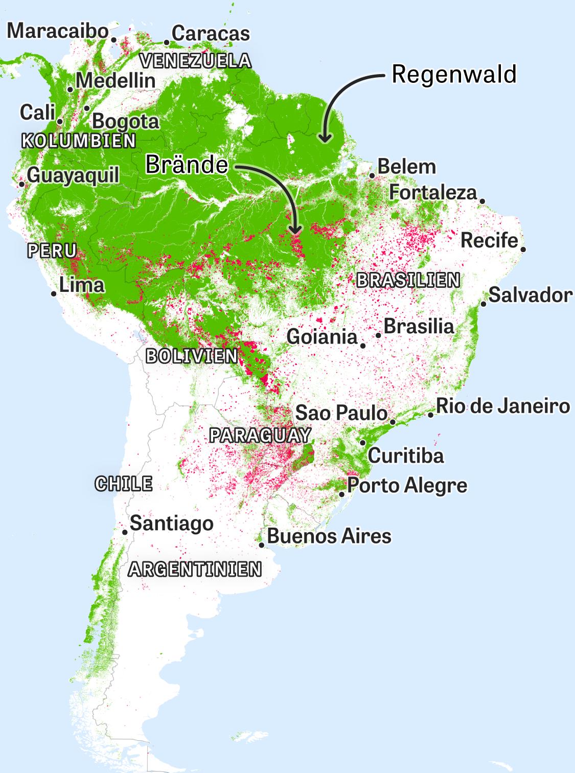 Waldbrände Alaska Karte.Waldbrände Weltweit Verschlingen Flammen Die Wälder Zeit Online