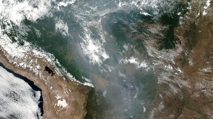 Südamerika: So sieht es momentan über Südamerika aus, wie die Zusammenstellung zahlreicher Einzelbilder des Earth Observing System Data and Information System zeigt.