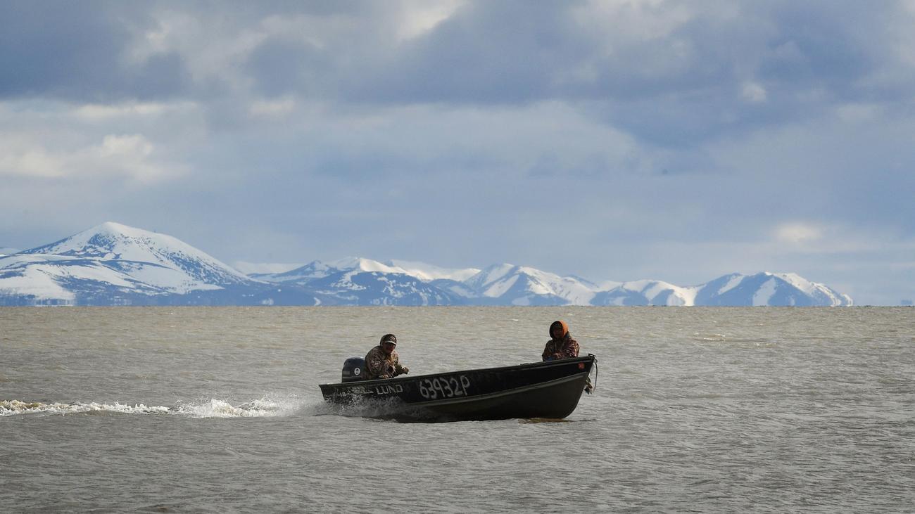 Pazifik: Hohe Temperaturen schuld an Massensterben vor US-Küste
