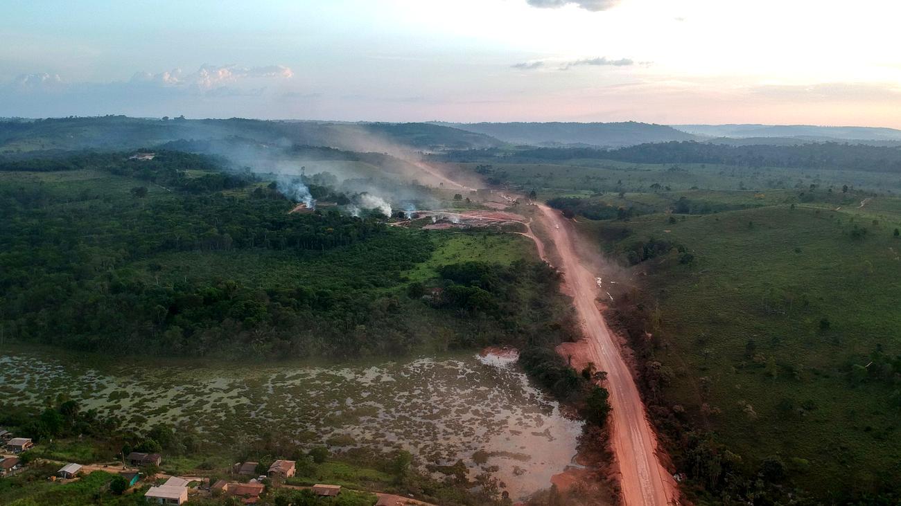 Abholzung im brasilianischen Amazonas-Gebiet deutlich gestiegen