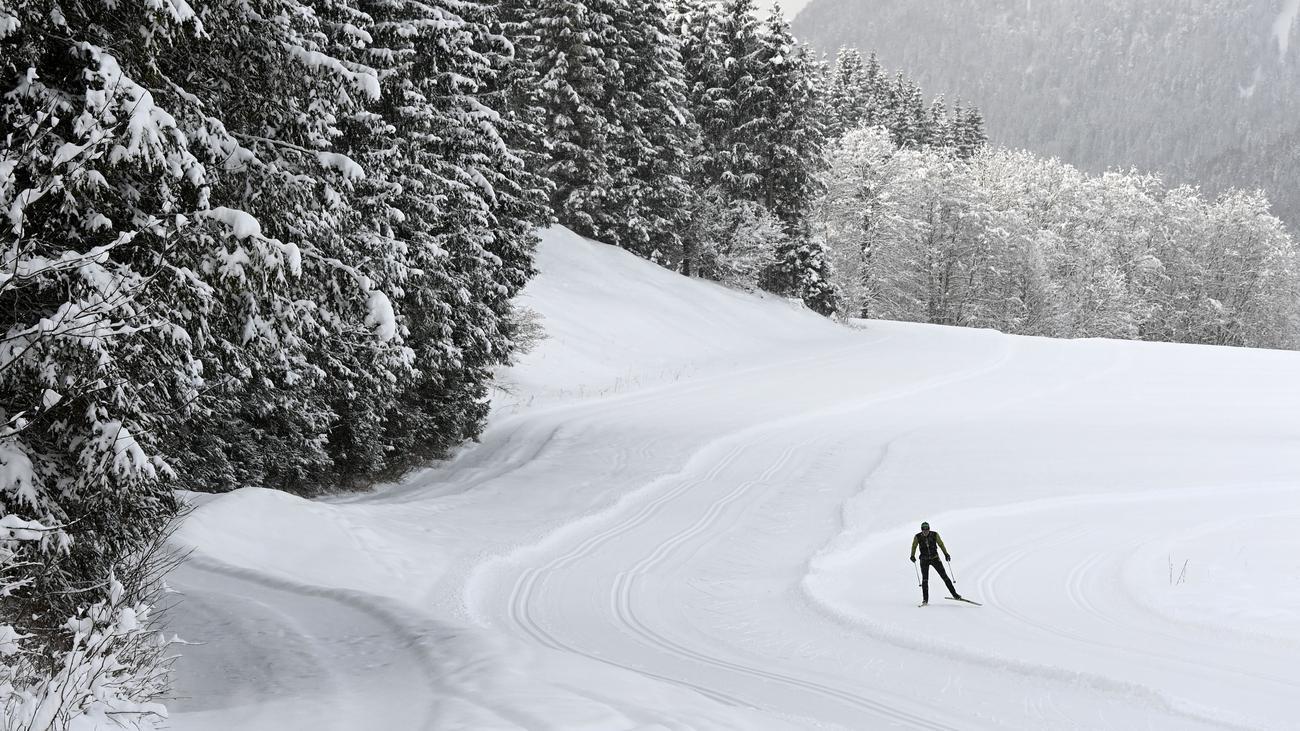 Giftige Spuren im Schnee