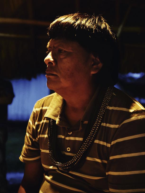 Regenwald am Amazonas