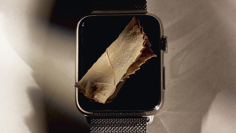 Stilkolumne: Verteidigung der Apple Watch