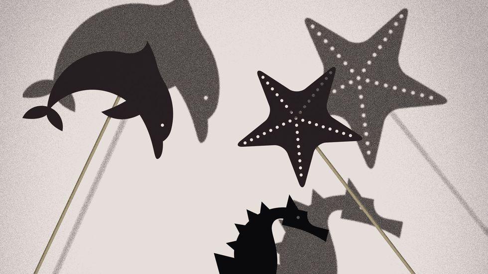 Wundertüte: Schattentheater
