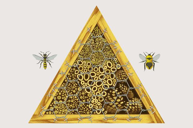 Insektenhotel: Bauen Sie ein Insektenhotel