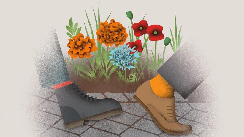 Guerilla-Gardening: Mit Blumen werfen