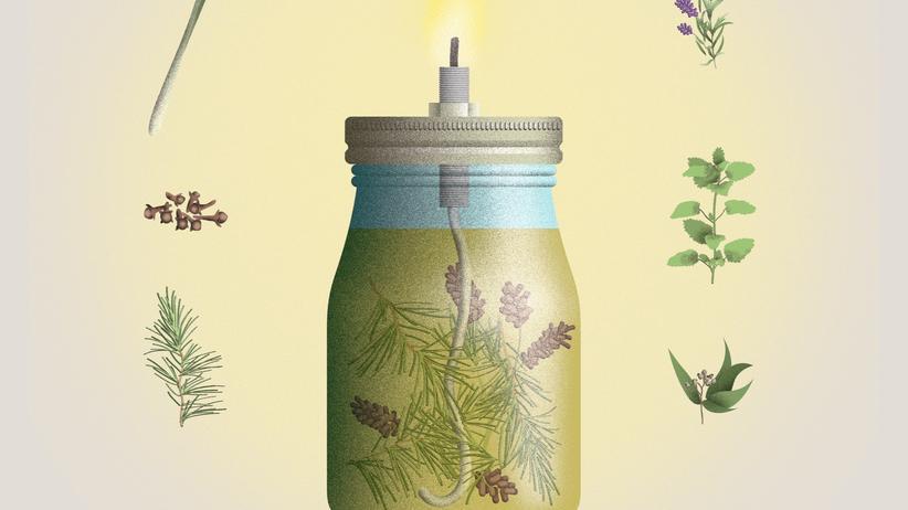Stechmücken: Bitte verduften