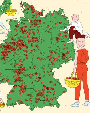 erdbeeren-hoefe-selberpfluecken-deutschlandkarte-teaser