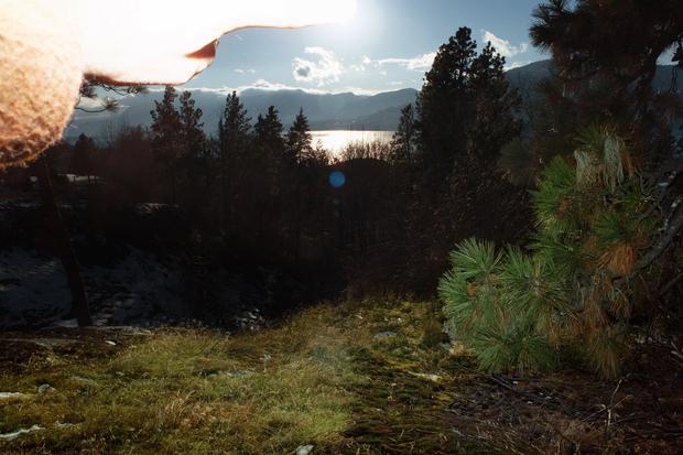 Natur: Waldboden, nachgiebig, nicht ganz eben. Für solchen Untergrund sind Glenke gemacht.