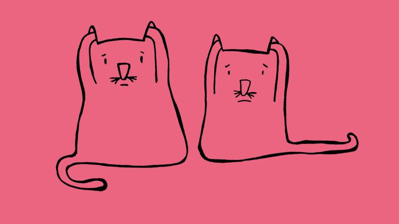 Harald Martenstein: Katzenmusik mit Geschmack